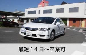 小野自動車教習所なら最短14日~卒業可