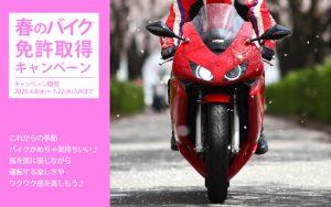 春のバイク免許取得キャンペーン